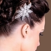 Larissa Hair Slide - Clear (Silver Plated)