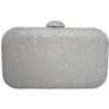 Cleo Evening Bag - Silver
