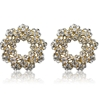 Elaina Earrings - Clear (Gold Plated)